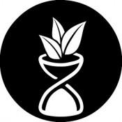Caritas Funeral Service - Formin SOS Service - Töölön Hautaustoimisto